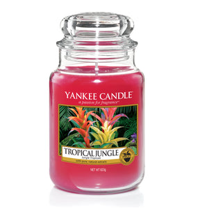 TROPICAL JUNGLE -Yankee Candle- Giara Grande