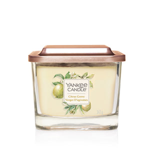 CITRUS GROVE -Yankee Candle- Candela Media