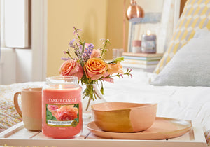 SUN-DRENCHED APRICOT ROSE -Yankee Candle- Giara Media