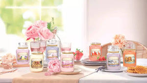 BLUSH BOUQUET -Yankee Candle- Candela Sampler
