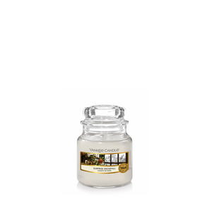 SURPRISE SNOWFALL -Yankee Candle- Giara Piccola