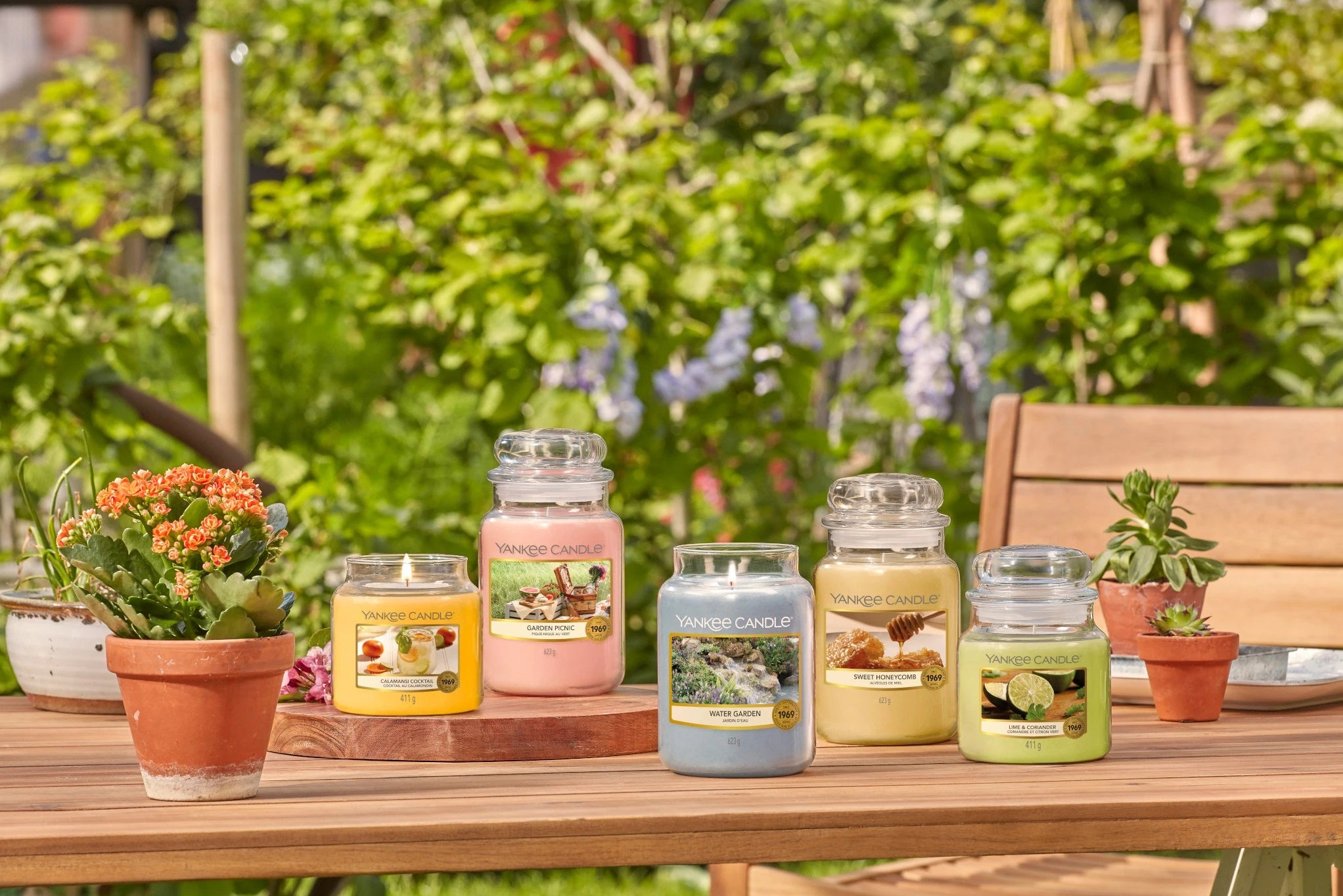 CALAMANSI COCKTAIL -Yankee Candle- Candela Sampler