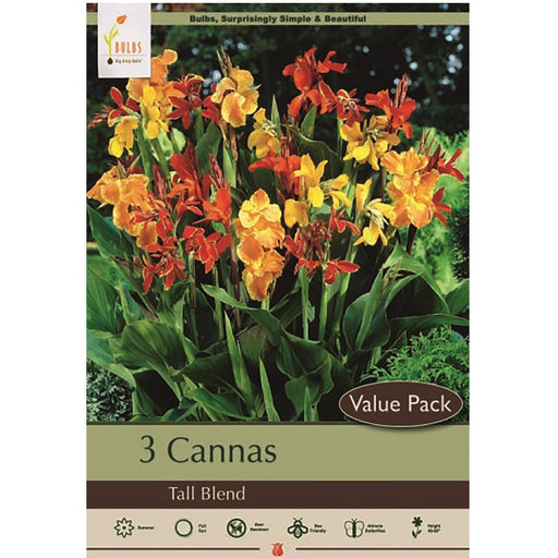 Canna Lily, Tall Blend - Pack of 3 Rhizomes