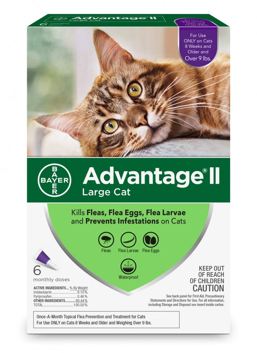 Bayer Advantage II Large Cat