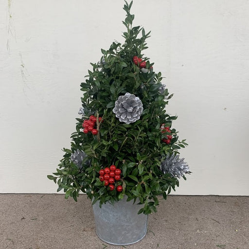 Boxwood Table Top Tree with Silver Accents