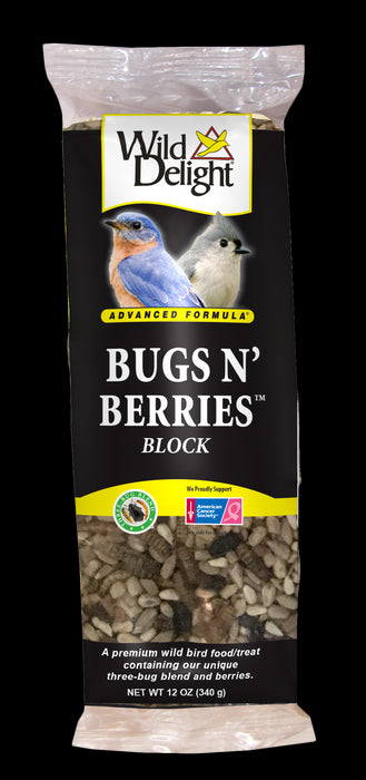 Wild Delight Bugs N' Berries Outdoor Bird Block