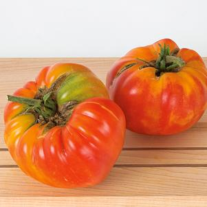 Tomato, Striped German  1-Gallon