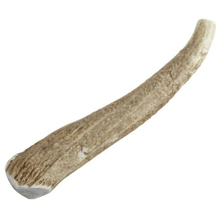 Happy Dog of Cape Cod Whole Elk Antler Dog Chews