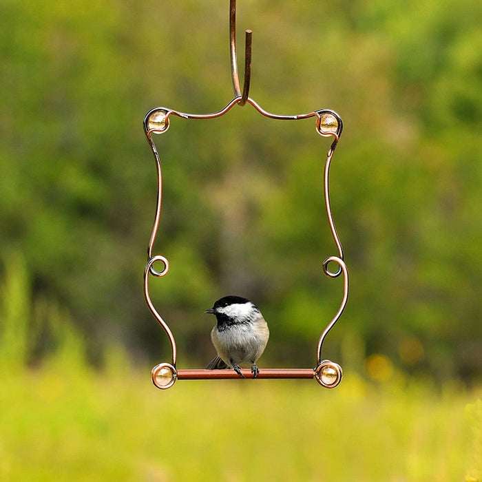Beaded Copper Hummingbird Swing, Perky-Pet