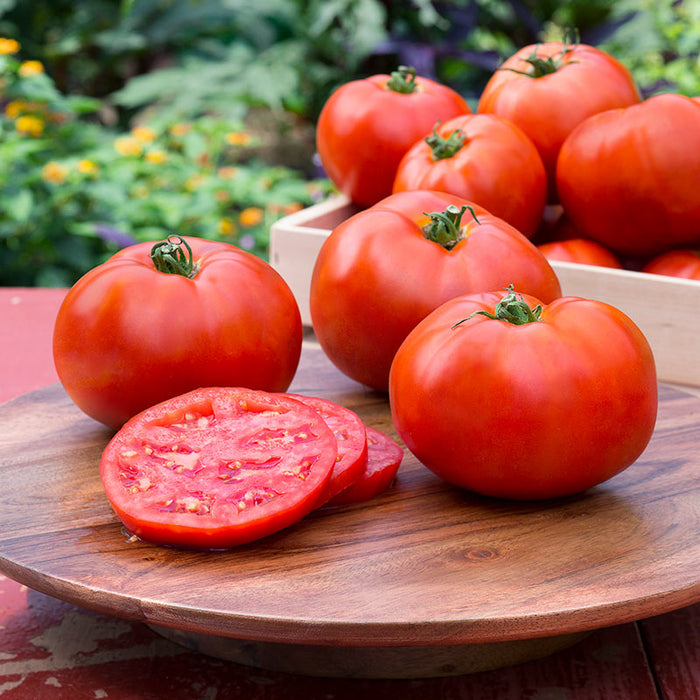 Tomato, Slicing Varieties