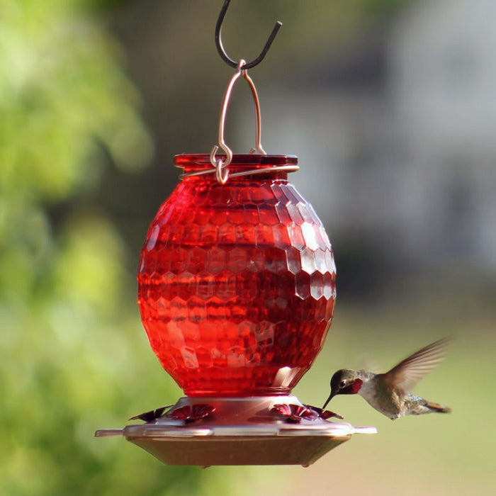 More Birds- Gem Hummingbird Feeder, 22 oz.