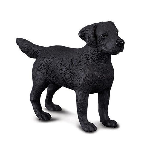 CollectA Black Labrador Retriever
