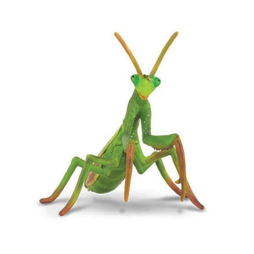 CollectA Praying Mantis