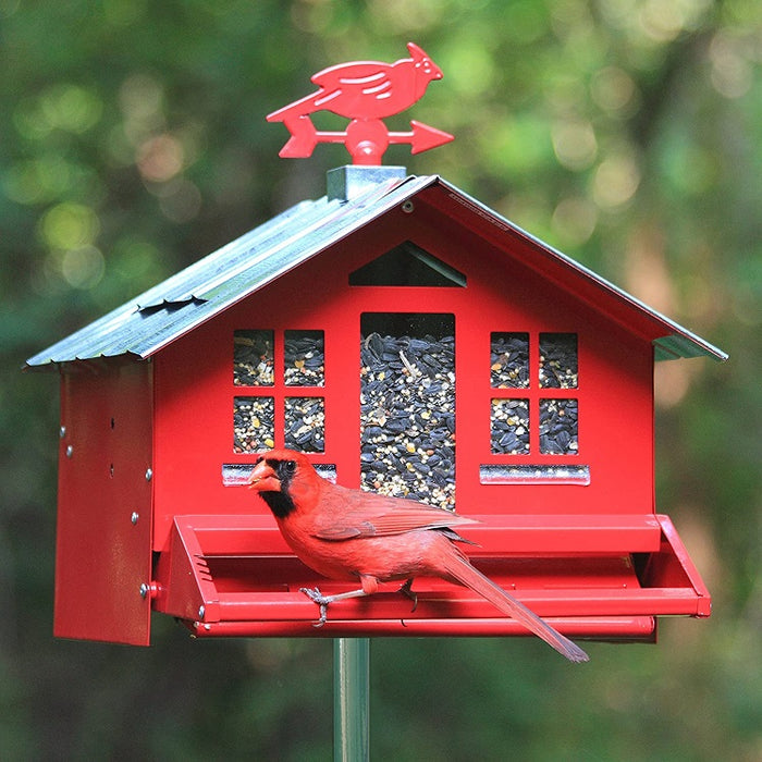 Squirrel-B-Gone II, Red Country Style Birdfeeder