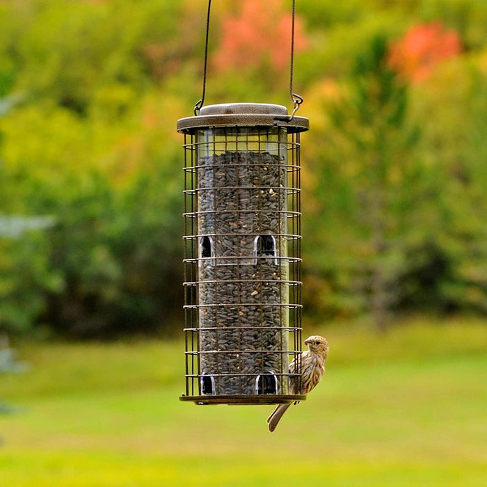 Squirrel Stumper Caged Bird Feeder, Perky Pet