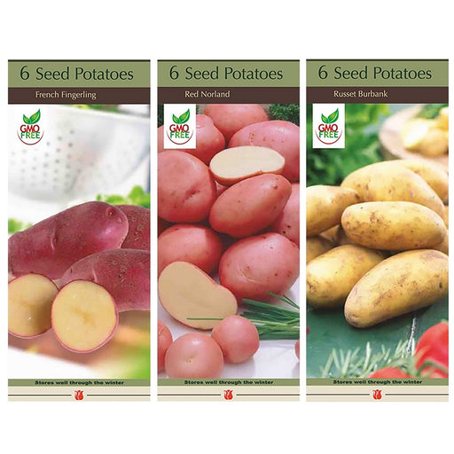 Conventional Seed Potatoes, Assorted Varieties - 6 per Box, Non-GMO