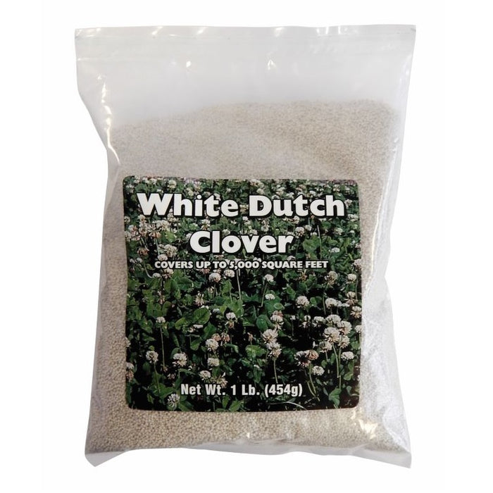Agway White Clover Seed