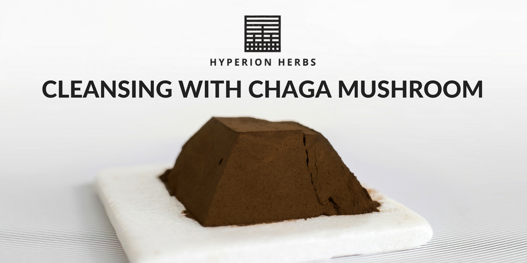 Cleansing with Chaga Mushroom