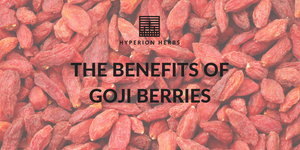 The Benefits of Goji Berries