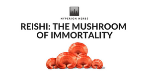 Reishi: The Mushroom of Immortality