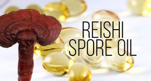 Organic Reishi Spore Oil Revealed