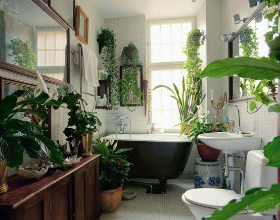 indoor-garden-bathroom
