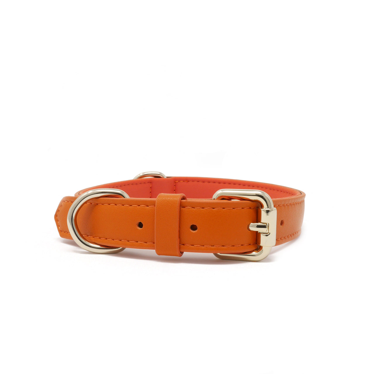 Collar - Tangerine Orange