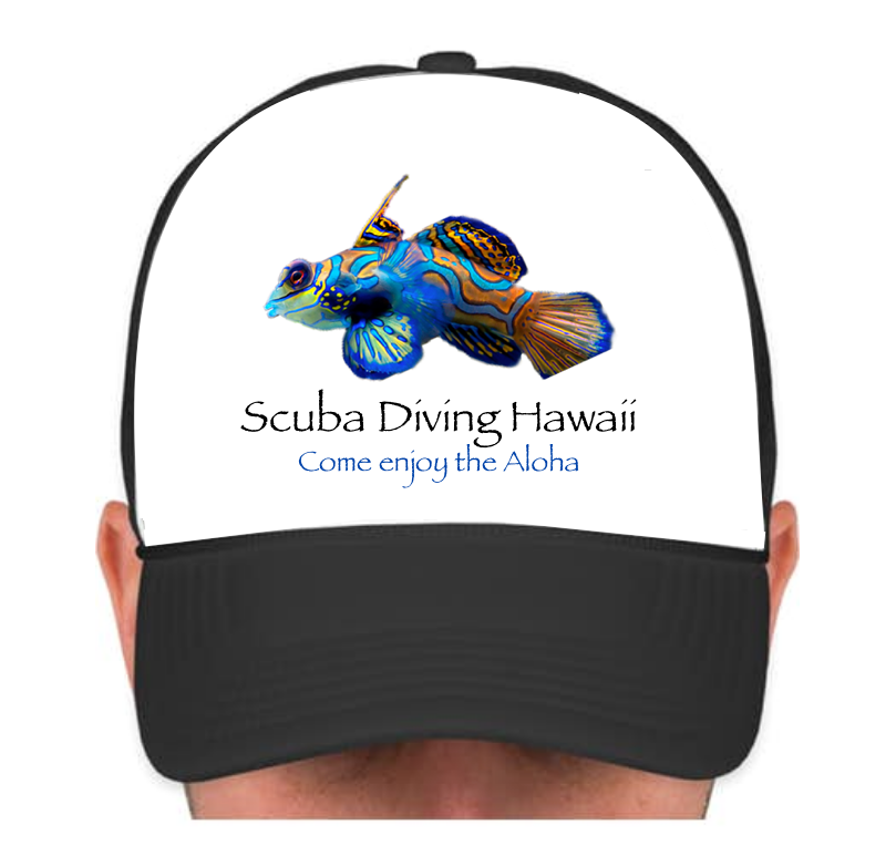 SDH Cap with Multicolor Fish Flat