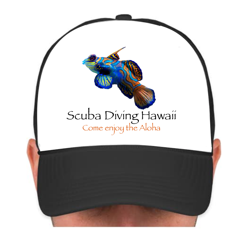 SDH Cap with Multicolor Fish