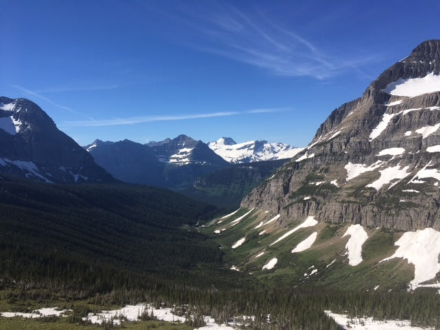 Looking south from Piegan Pass in Glacier NP. A group of hikers several hours behind me saw a mama grizzly bear with two cubs running down in this valley.