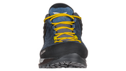 Mountain Trainer GTX Men's F19