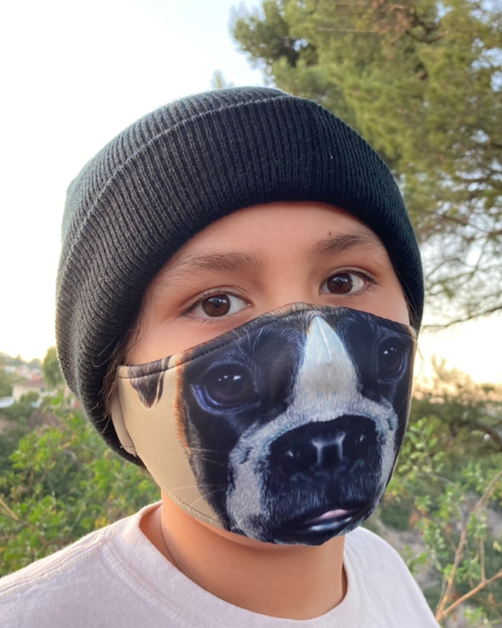 Adult and Kids Animal Cloth Face Mask - Boxer