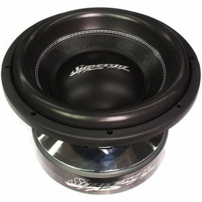 "Synergy Audio WFO 12"" Subwoofer"
