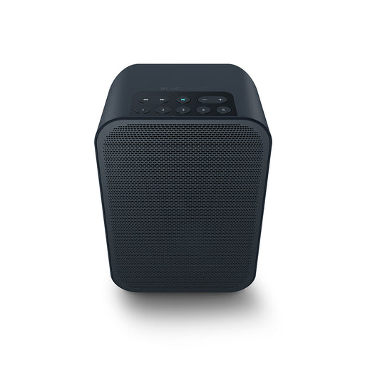 Bluesound Pulse Flex 2i Portable Wireless Multi-Room Music Streaming Speaker - Safe and Sound HQ