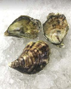 Pickering Pass Oysters