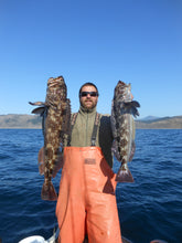 Load image into Gallery viewer, California Lingcod