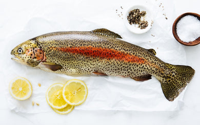 Whole Mcfarland Springs Trout (2.5 lb fish)