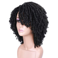 Short Braid Wigs for Black Women Afro Curly Wig