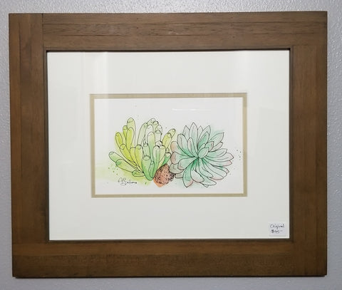 Succulents - original