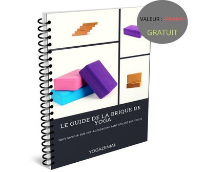 Le guide brique de Yoga