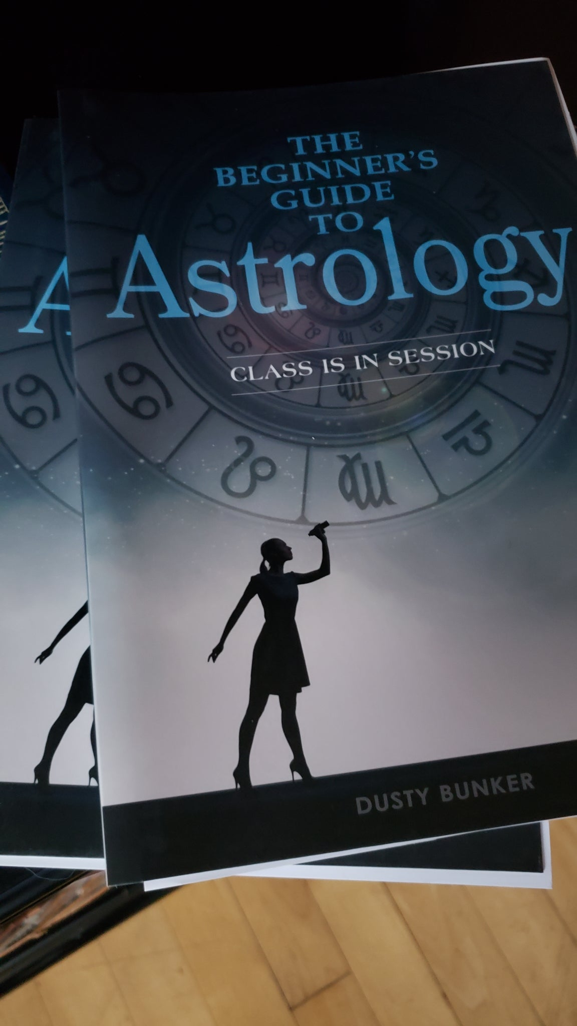 The Beginner's Guide to Astrology, Book - Tree Of Life Shoppe