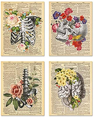 Dictionary Art Prints Floral Anatomy (Framed) - Tree Of Life Shoppe