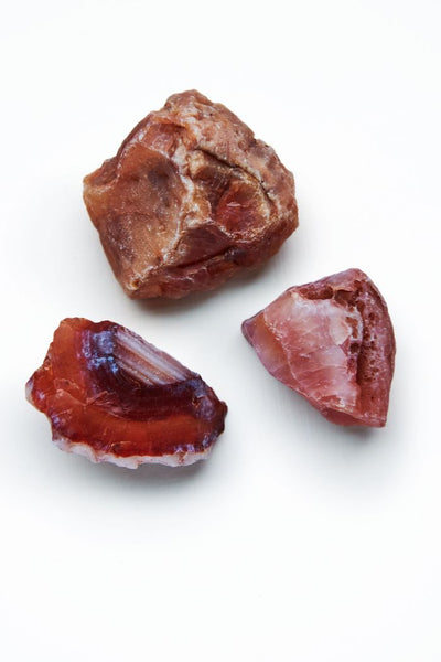 Carnelian - Raw - Tree Of Life Shoppe