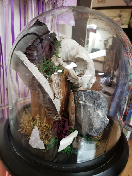 OOAK  Natures Ancestor Altar Glass Dome - Tree Of Life Shoppe