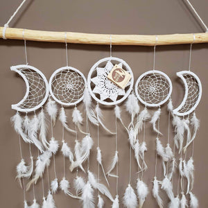 Sun and Moon Dreamcatcher Collection on branch - Tree Of Life Shoppe