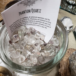 Phantom Quartz Crystal - Tree Of Life Shoppe
