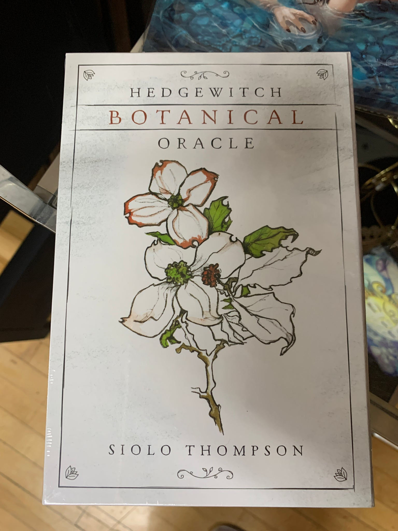 Hedgewitch Botanical Oracle by Siolo Thompson - Tree Of Life Shoppe