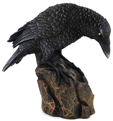 Downward Looking Raven 5 1/2""