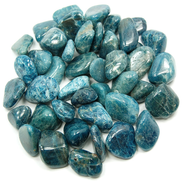 Apatite, Blue - Tumbled - Tree Of Life Shoppe