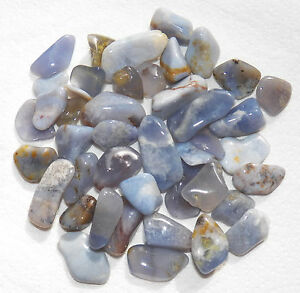 Blue Chalcedony - Tumbled - Tree Of Life Shoppe